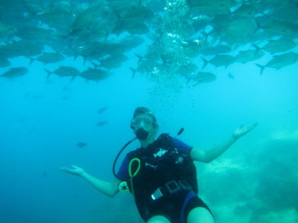 Me under a shoal of jackfish, Sipadan. Photo by Jason Browning