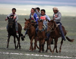 Horse race in the Naadam festival, Chandmani, West Mongolia