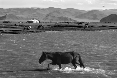 On the outskirts of Khovd city