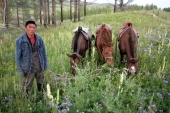 Chimeet and his horses, Khentii, East Mongolia