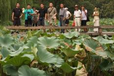 Humble Administrator's Garden, Suzhou, Jiangsu