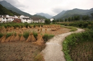 Village near Dazhang mountain, Jiangxi